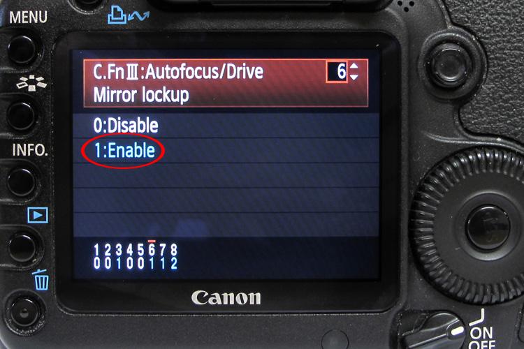 הגדרת נעילת מראה במצלמה, מאמר צילום מאקרו, תאורה טבעית