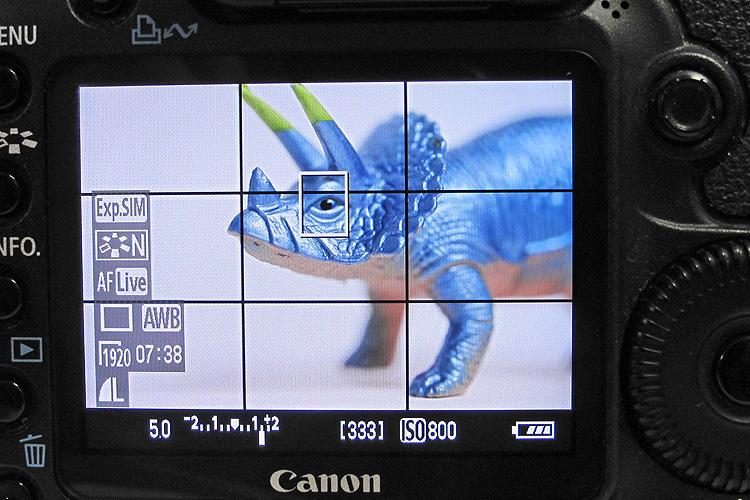 מצב תצוגה חיה במצלמה, מאמר צילום מאקרו, תאורה טבעי