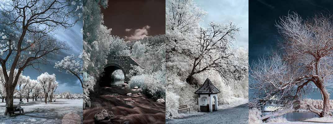 קורס צילום נוף, צילום אינפרא אדום, אלון קירה בית ספר לצילום