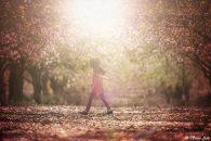 לימוד צילום פלייר / הבהק Sun Flare