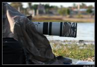 מאמר צילום ציפורים – צילום בהסוואה ושעועית…