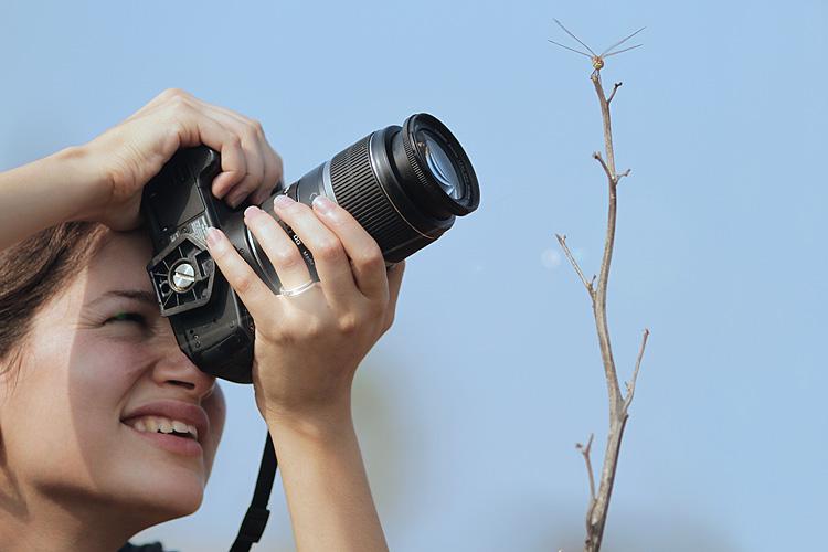 מאמר צילום מאקרו עדשות
