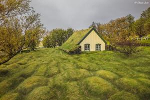 איסלנד, אלון קירה בית ספר לצילום